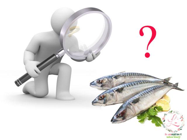 Cách chọn cá thu tươi ngon