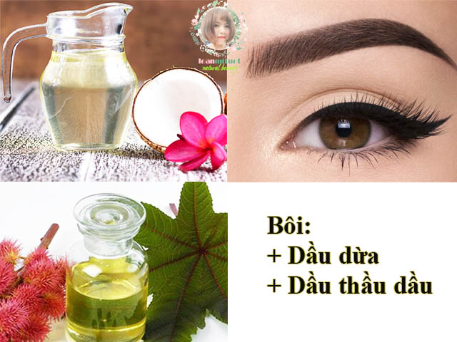 Cách kích thích lông mày mọc nhanh nhờ dầu dừa, dầu thầu dầu